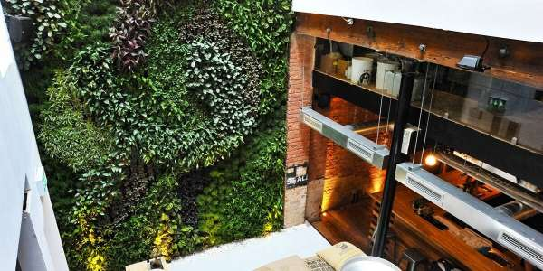 Living Walls – Bringing the outdoors into the workspace
